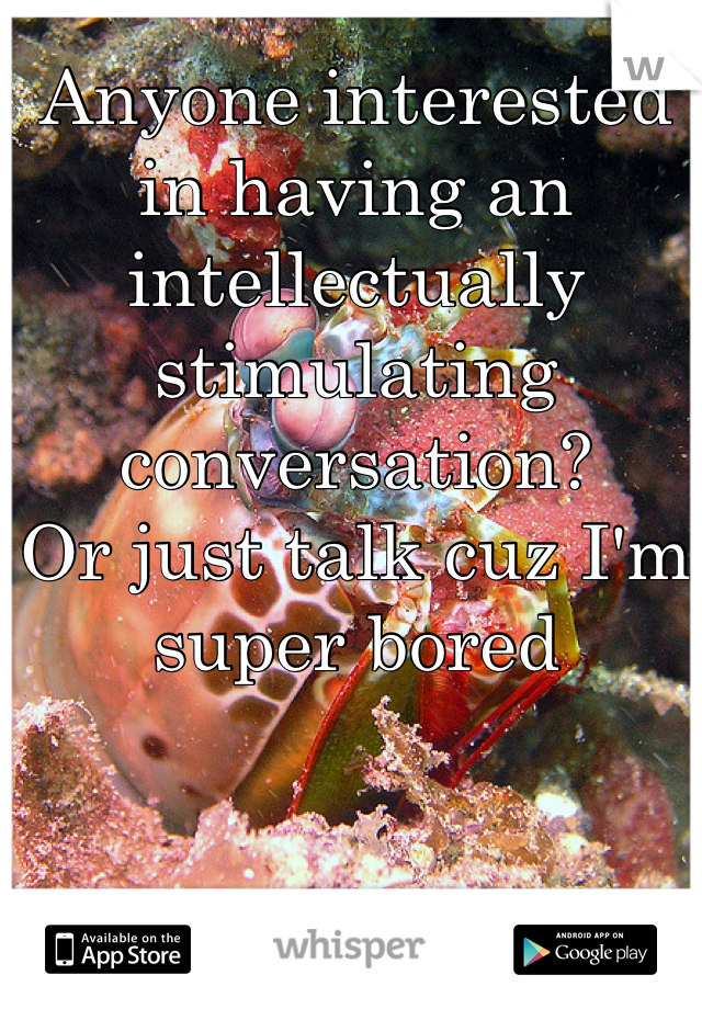 Anyone interested in having an intellectually stimulating conversation?  Or just talk cuz I'm super bored