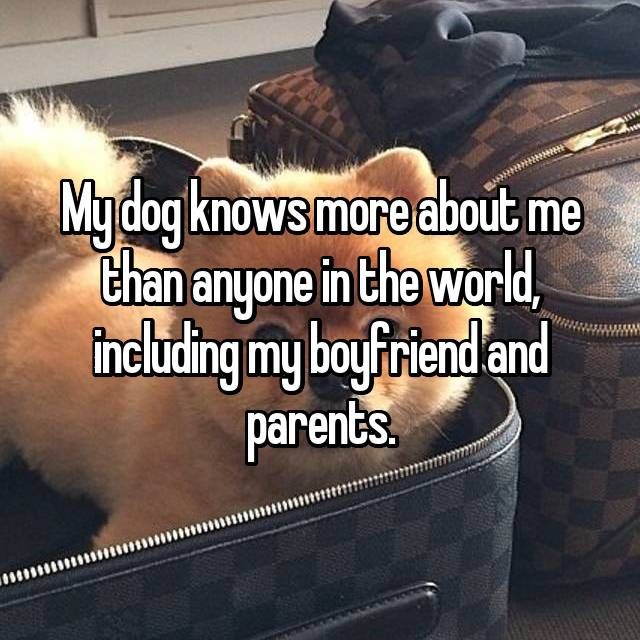 My dog knows more about me than anyone in the world, including my boyfriend and parents.