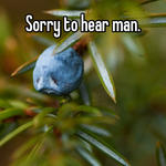 Sorry to hear man.