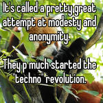 """It's called a pretty great attempt at modesty and anonymity.   They p much started the """"techno"""" revolution."""