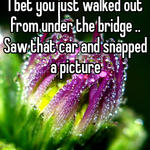 I bet you just walked out from under the bridge .. Saw that car and snapped a picture