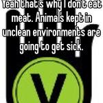 Yeah that's why I don't eat meat. Animals kept in unclean environments are going to get sick.