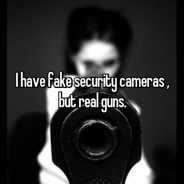 I have fake security cameras , but real guns.