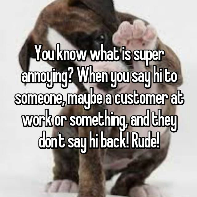 You know what is super annoying? When you say hi to someone, maybe a customer at work or something, and they don't say hi back! Rude!