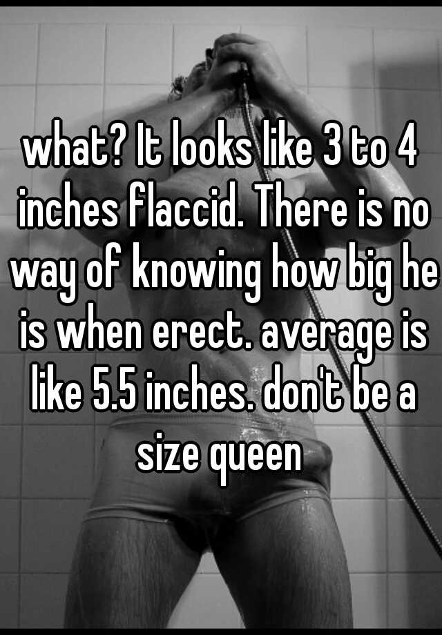 what? It looks like 3 to 4 inches flaccid. There is no way of ...