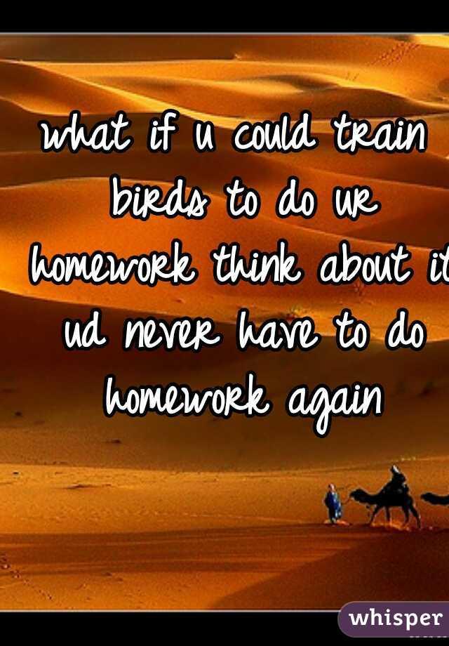 what homework again