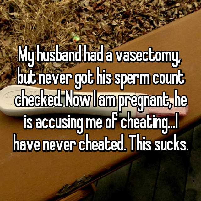 My husband had a vasectomy,  but never got his sperm count checked. Now I am pregnant, he is accusing me of cheating...I have never cheated. This sucks.