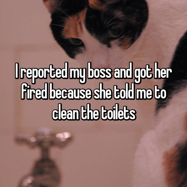 I reported my boss and got her fired because she told me to clean the toilets