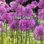 Lmao. Smart