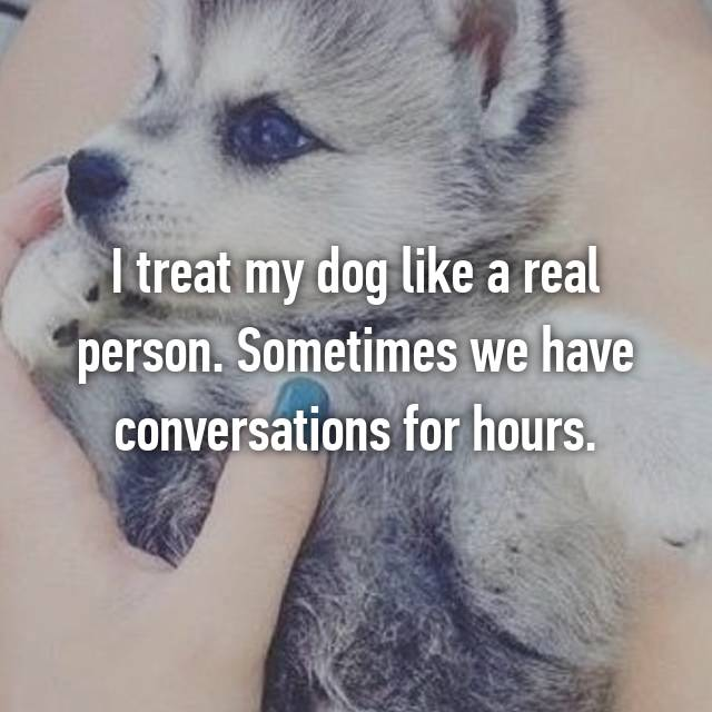 I treat my dog like a real person. Sometimes we have conversations for hours.