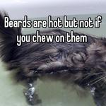 Ew  Beards are hot but not if you chew on them