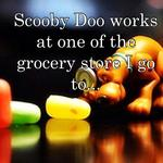 Scooby Doo works at one of the grocery store I go to...