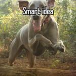 Smart idea