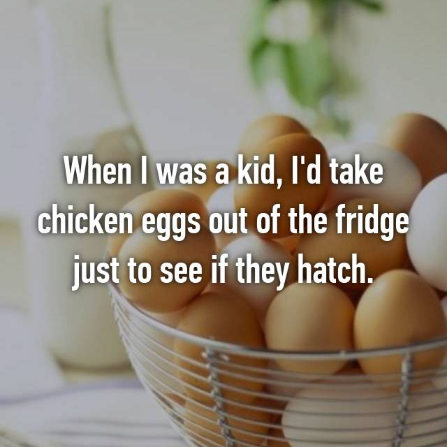 When I was a kid, I'd take chicken eggs out of the fridge just to see if they hatch.
