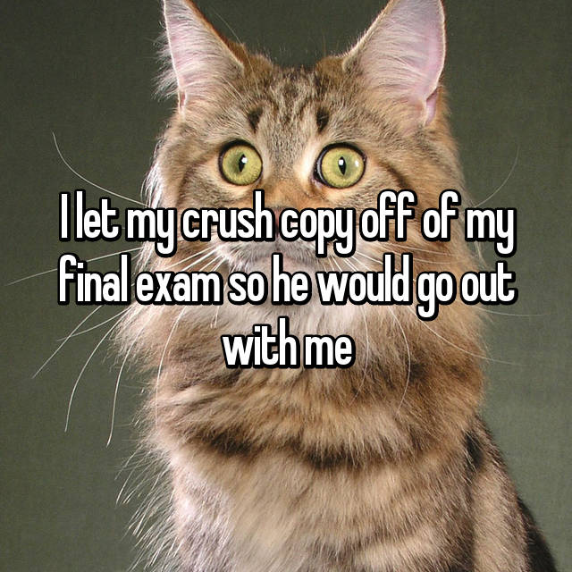 I let my crush copy off of my final exam so he would go out with me