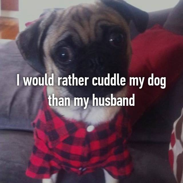 I would rather cuddle my dog than my husband