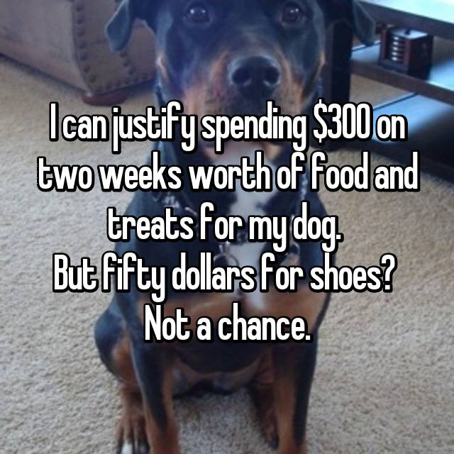 I can justify spending $300 on two weeks worth of food and treats for my dog.  But fifty dollars for shoes?  Not a chance.