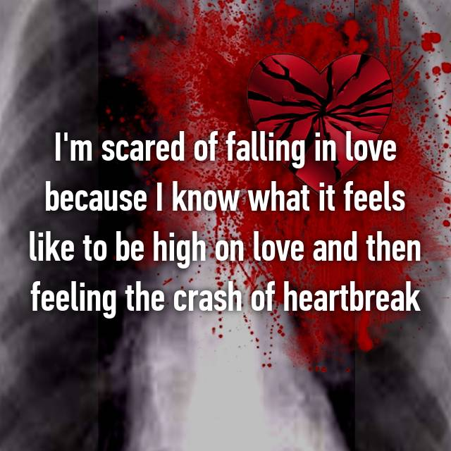 I'm scared of falling in love because I know what it feels like to be high on love and then feeling the crash of heartbreak