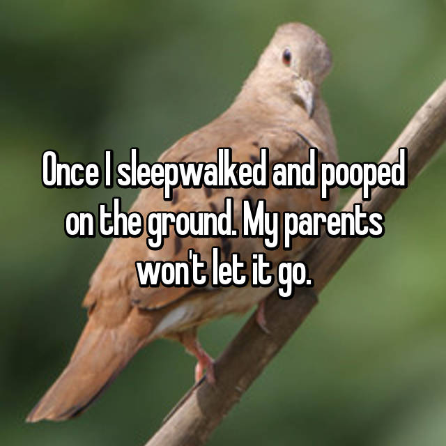 Once I sleepwalked and pooped on the ground. My parents won't let it go.