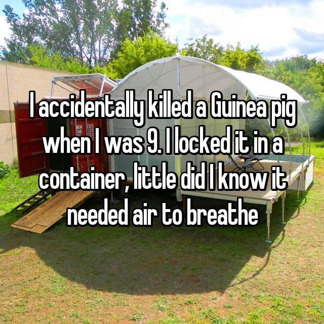 I accidentally killed a Guinea pig when I was 9. I locked it in a container, little did I know it needed air to breathe