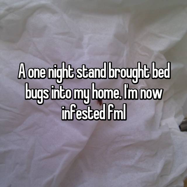 A one night stand brought bed bugs into my home. I'm now infested fml