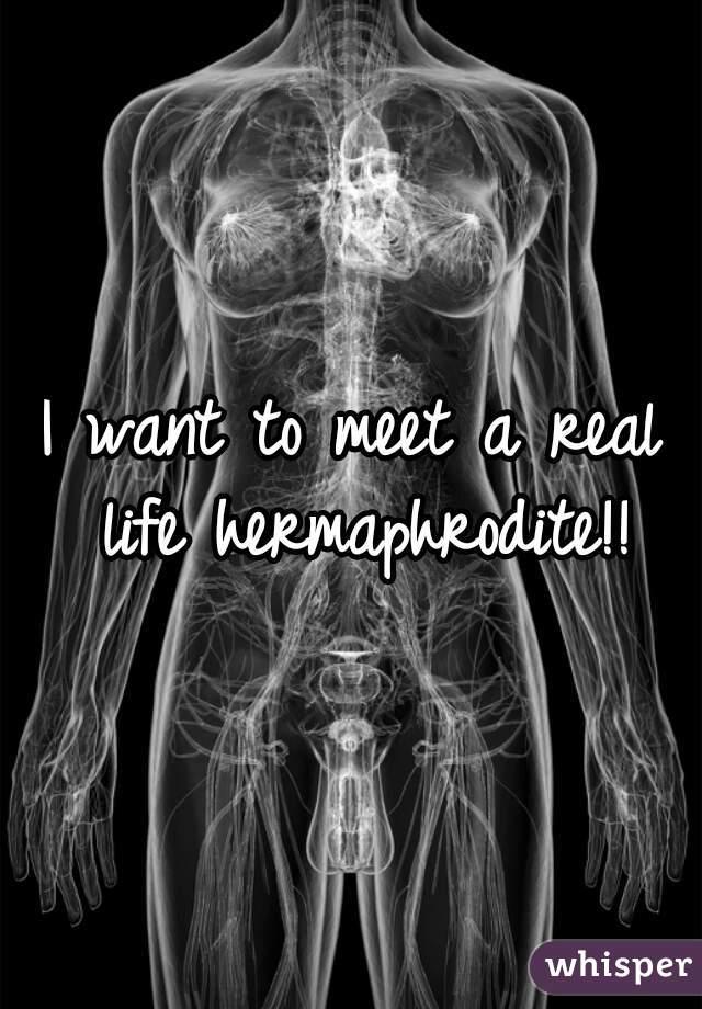 Nice! real hermophrodit