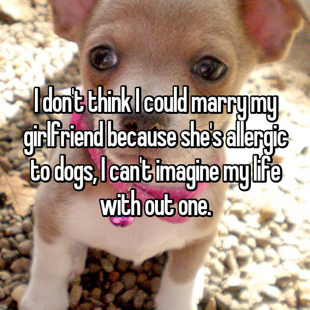 I don't think I could marry my girlfriend because she's allergic to dogs, I can't imagine my life with out one.
