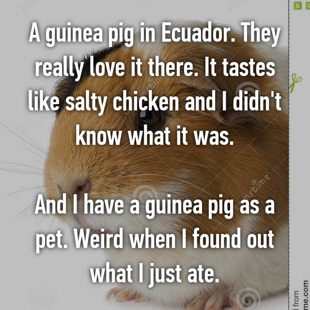 A guinea pig in Ecuador. They really love it there. It tastes like salty chicken and I didn't know what it was.  And I have a guinea pig as a pet. Weird when I found out what I just ate.