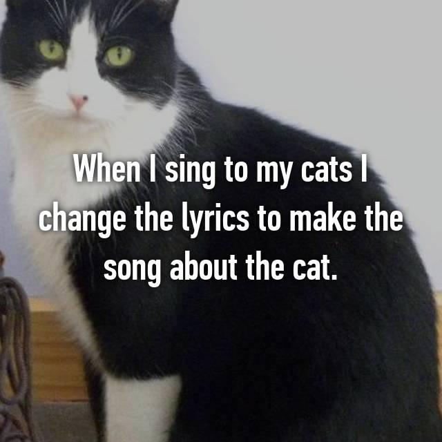 When I sing to my cats I change the lyrics to make the song about the cat.