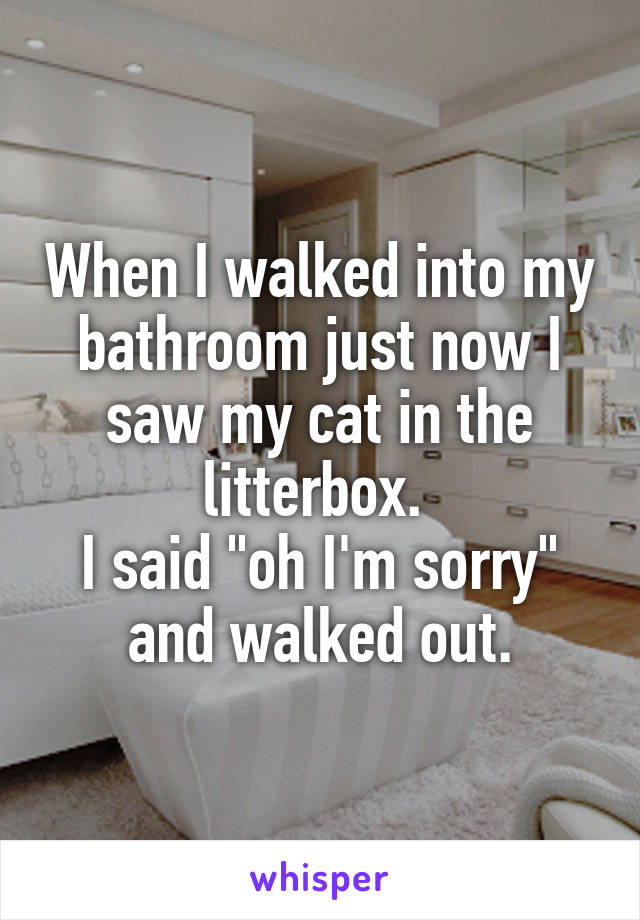 """When I walked into my bathroom just now I saw my cat in the litterbox.  I said """"oh I'm sorry"""" and walked out."""