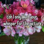 tbh I only liked your whisper for the picture