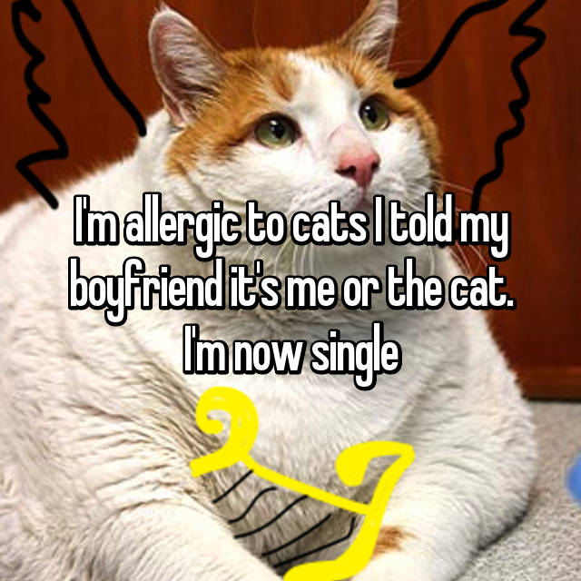 I'm allergic to cats I told my boyfriend it's me or the cat. I'm now single😊😊