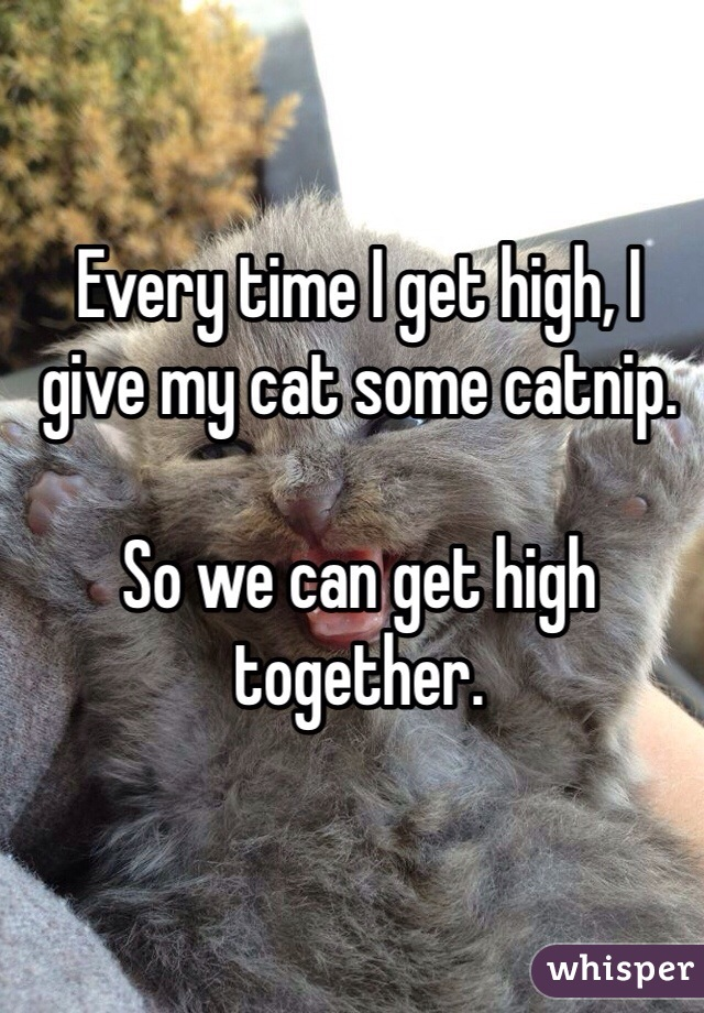 0501a6f7b2045f3910715b6a675b9dc32ac5f6 wm Stoners Share Their Funniest High Habits