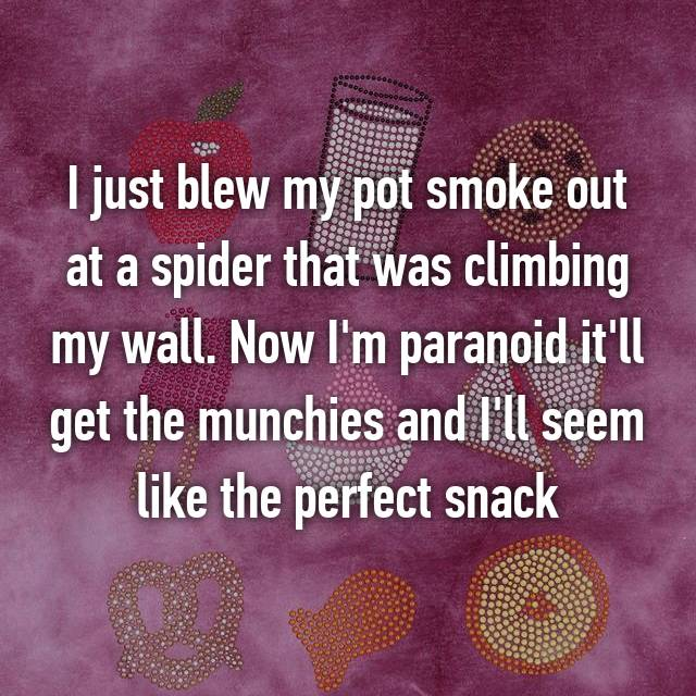 I just blew my pot smoke out at a spider that was climbing my wall. Now I'm paranoid it'll get the munchies and I'll seem like the perfect snack