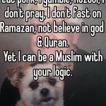 I have sex, I drink alcohol, I eat pork, I gamble, nozool, I don't pray, I don't fast on Ramazan, not believe in god & Quran. Yet I can be a Muslim with your logic.