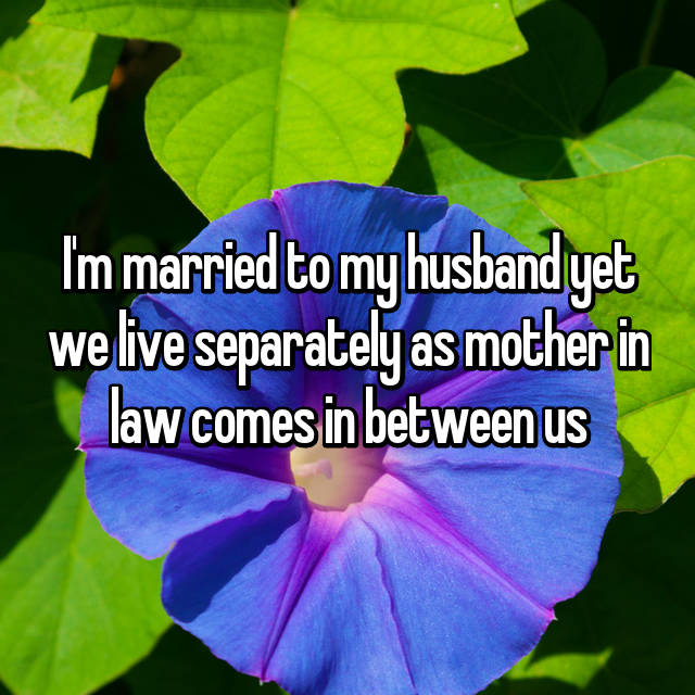I'm married to my husband yet we live separately as mother in law comes in between us