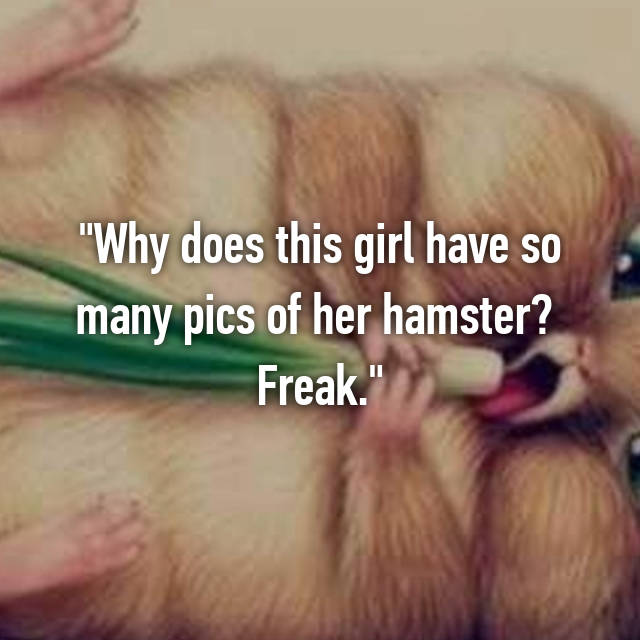 """Why does this girl have so many pics of her hamster?  Freak."""