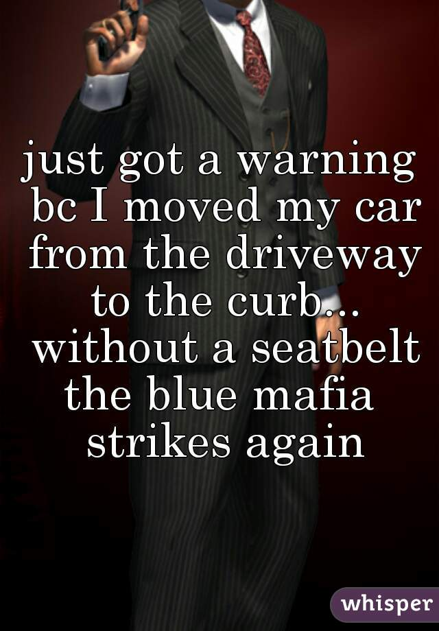 just got a warning bc I moved my car from the driveway to the curb... without a seatbelt the blue mafia strikes again