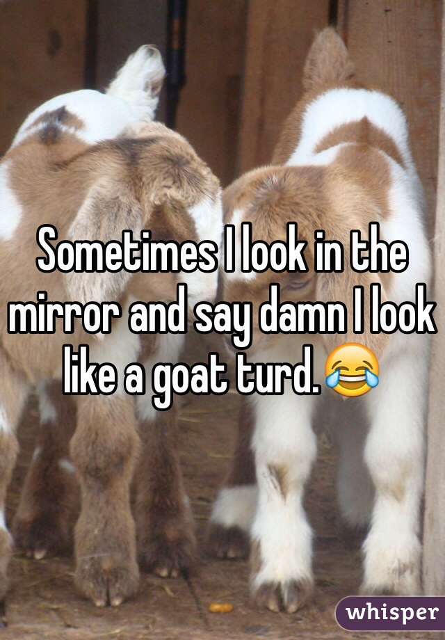 Sometimes I look in the mirror and say damn I look like a goat turd.😂