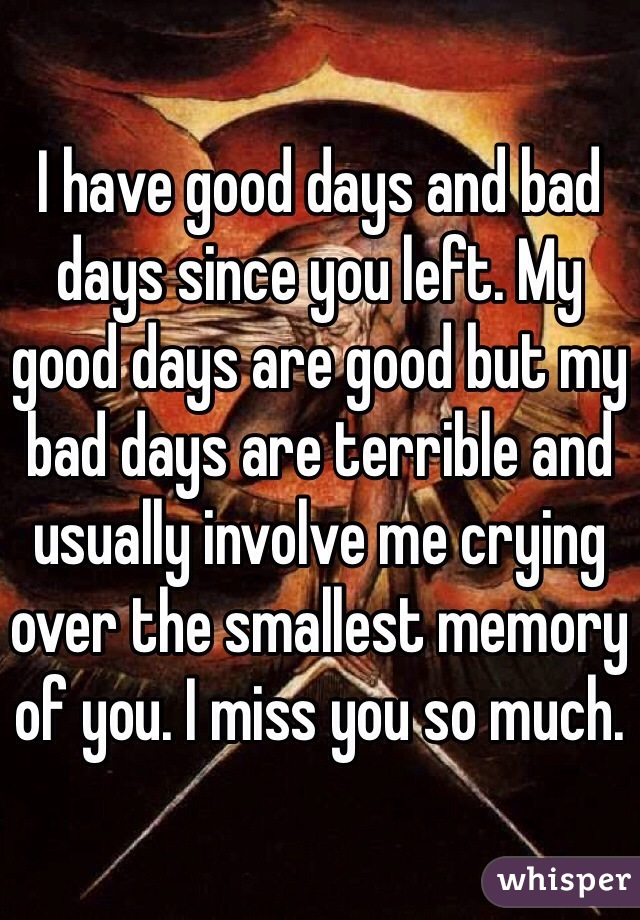 I have good days and bad days since you left. My good days are good but my bad days are terrible and usually involve me crying over the smallest memory of you. I miss you so much.
