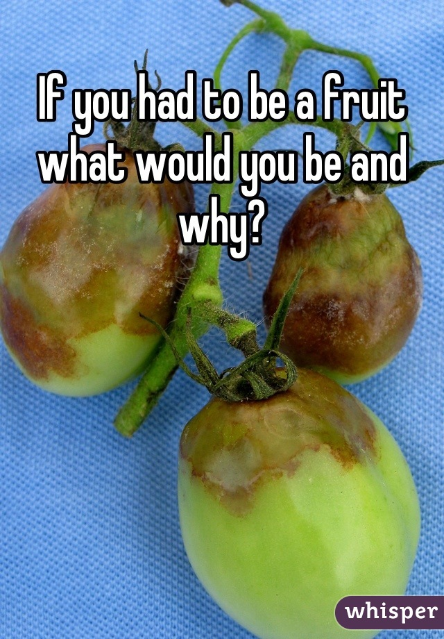 If you had to be a fruit what would you be and why?