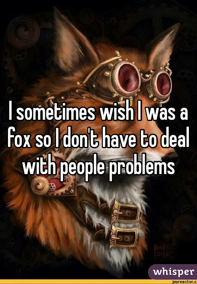 I sometimes wish I was a fox so I don't have to deal with people problems