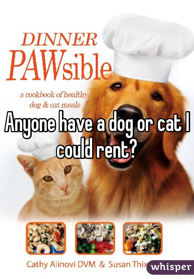 Anyone have a dog or cat I could rent?