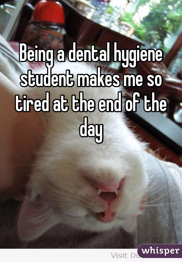 Being a dental hygiene student makes me so tired at the end of the day