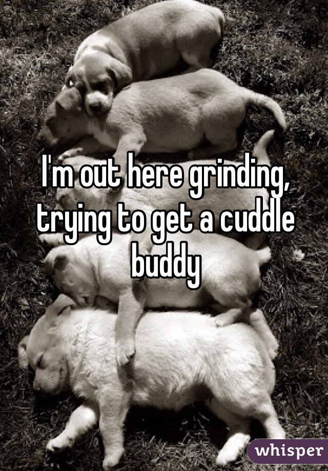 I'm out here grinding, trying to get a cuddle buddy