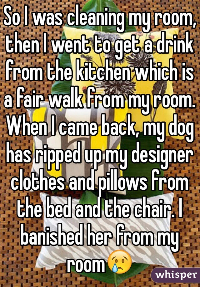 So I was cleaning my room, then I went to get a drink from the kitchen which is a fair walk from my room. When I came back, my dog has ripped up my designer clothes and pillows from the bed and the chair. I banished her from my room😢