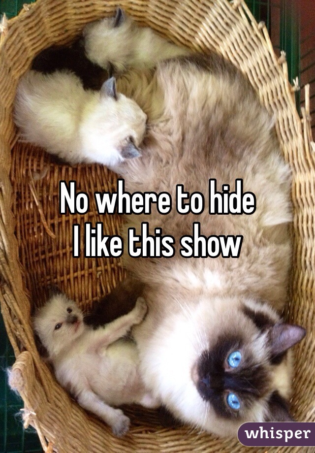 No where to hide  I like this show