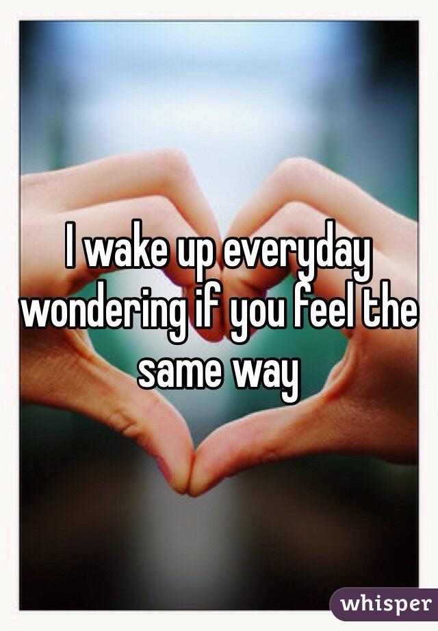 I wake up everyday wondering if you feel the same way