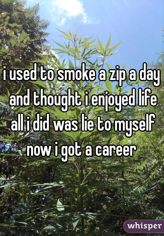i used to smoke a zip a day and thought i enjoyed life all i did was lie to myself now i got a career