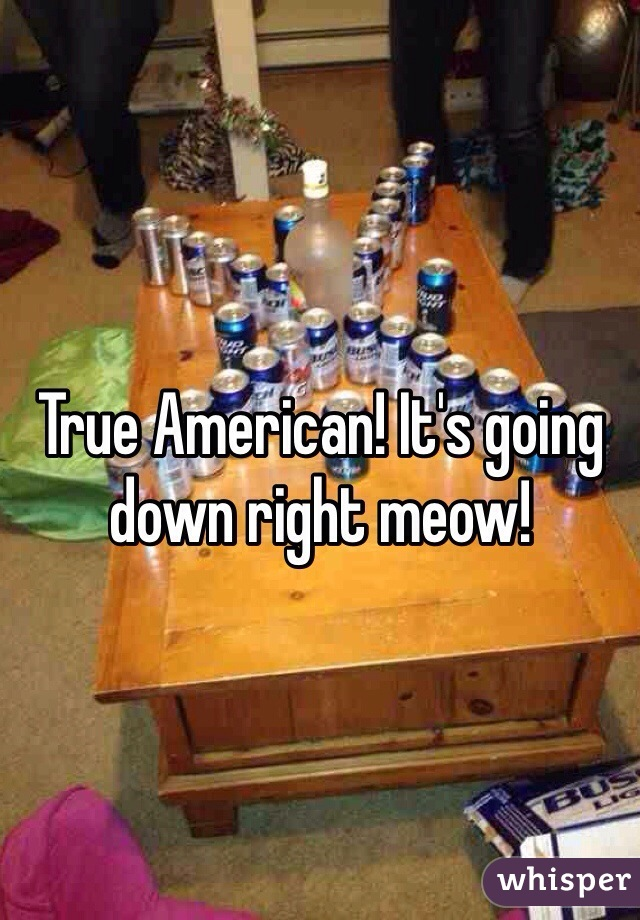 True American! It's going down right meow!